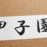 2016ドラフト組の横浜の藤平、花咲徳栄の高橋、履正社の寺島、近江の京山に共通することとは?