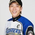 宮西尚生(2017年開幕版)【北海道日本ハムファイターズ】投球データ