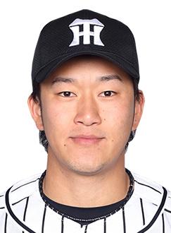 岩貞祐太(2017年開幕版)【阪神タイガース】投球データ